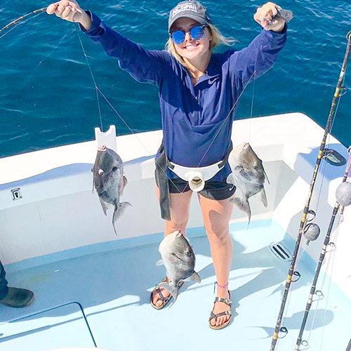 2019 triggerfish season